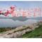 2019壮瞥公園【梅の花だより(満開!!)】13日目(5月10日)*開花指数・150%*
